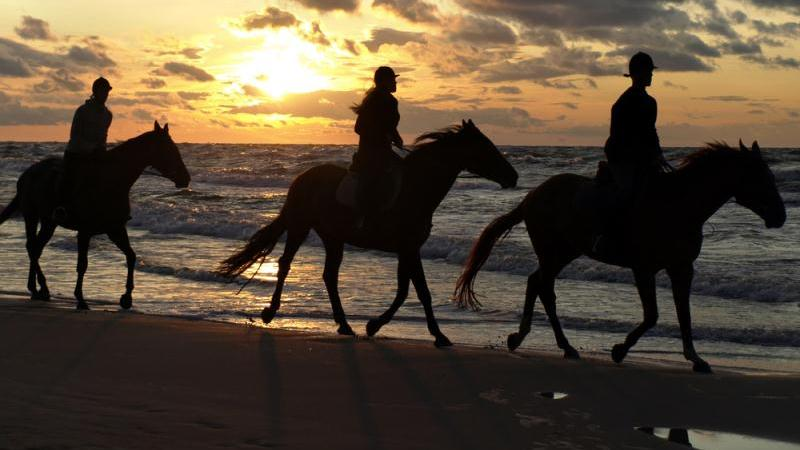 /excursion-image/barbados/horseback-riding-at-bath-beach/058483_121031024639.jpg
