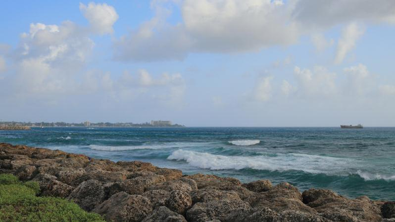 /excursion-image/barbados/perfect-pair-beach-day-and-turtle-swim/072230_151214010923.jpg