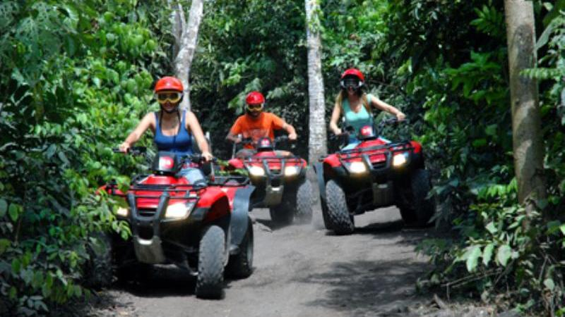 /excursion-image/cozumel-mexico/atv-jungle-and-optional-snorkel/097245_110909014254.jpg