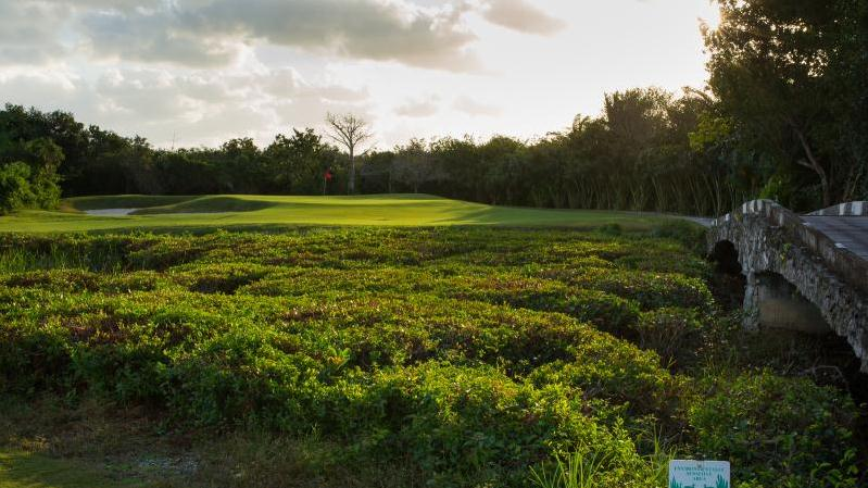 /excursion-image/cozumel-mexico/golf-18-holes-on-a-beautiful-course/001185_150615015110.jpg