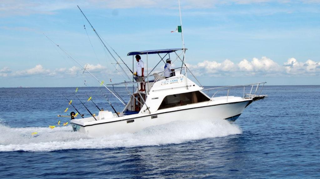 Half day deep sea fishing in cozumel mexico reviews for Cozumel fishing charters