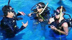 /excursion-image/cozumel-mexico/scuba-discover-scuba-with-shore-dive/016672_110908014257.jpg