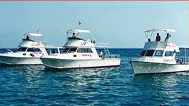 /excursion-image/cozumel-mexico/scuba-one-tank-night-dive-in-cozumel/039347_110909013608.jpg