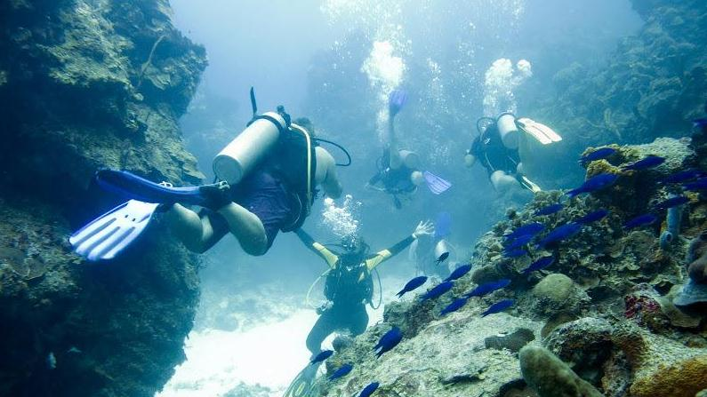 /excursion-image/cozumel-mexico/scuba-two-tank-dive-for-certified-divers/112456_150831125657.jpg