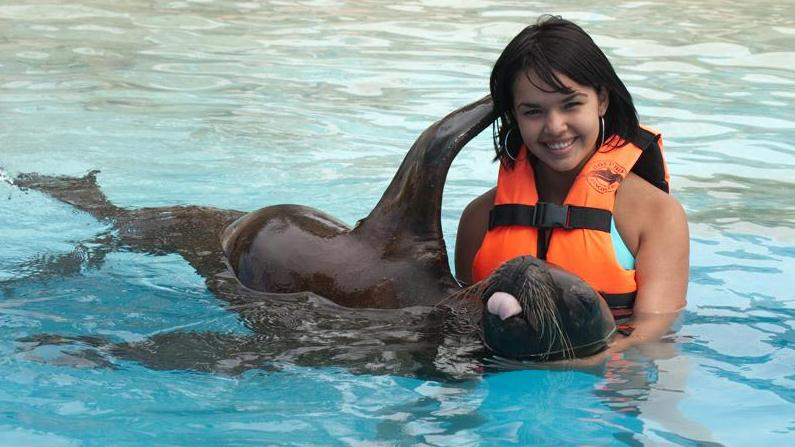 /excursion-image/cozumel-mexico/sea-lion-discovery/060767_120525091414.jpg