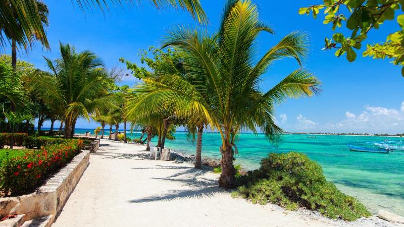 /excursion-image/cozumel-mexico/turtle-cove-snorkel-and-beach/123268_160428012237.jpg