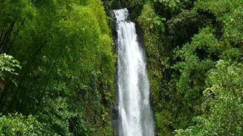 /excursion-image/dominica-roseau/land-sea-medley-of-dominica/089285_140107121028.jpg