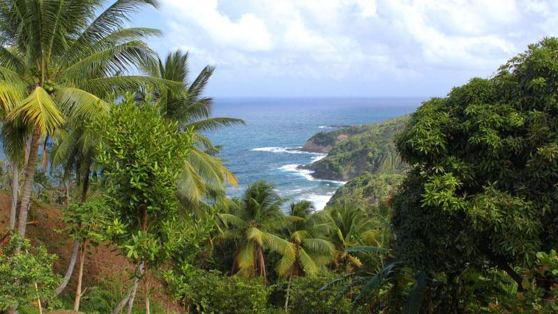 /excursion-image/dominica-roseau/private-roseau-valley-adventure/099801_141008022107.jpg