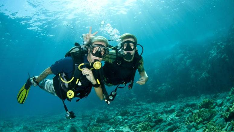 /excursion-image/dominica-roseau/scuba-one-tank-dive/032250_130213121230.jpg