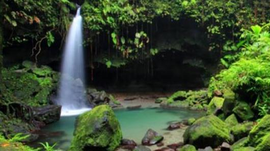 /excursion-image/dominica-roseau/trafalgar-falls-and-emerald-pool/000811_111027012716.jpg