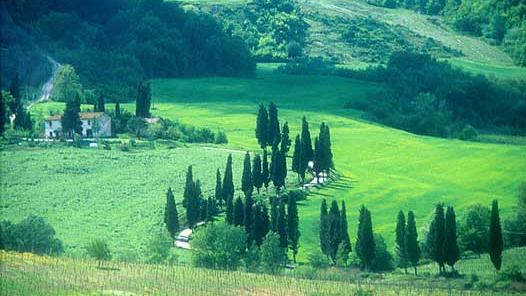 /excursion-image/florence-italy/half-day-chianti-countryside-tour-with-wine-tasting/017121_110906092910.jpg