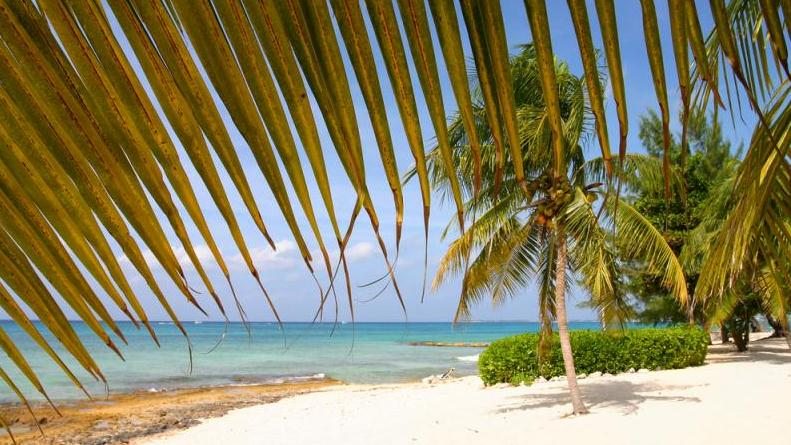 /excursion-image/grand-cayman-george-town/beach-break-with-lunch/031890_140617022730.jpg