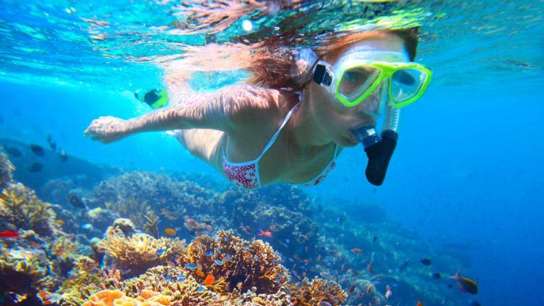 Best Snorkeling In Grand Cayman Island