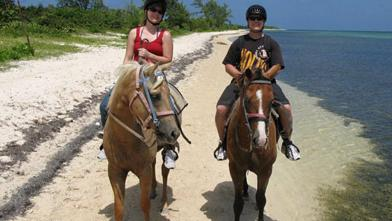 /excursion-image/grand-cayman-george-town/horseback-ride-along-the-beach/001226_110908121810.jpg