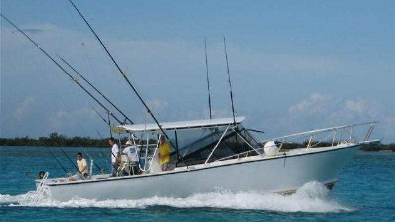 reef fishing in grand cayman grand cayman george town