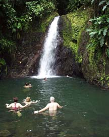 /excursion-image/grenada/seven-sisters-waterfall-hike/022059.jpg