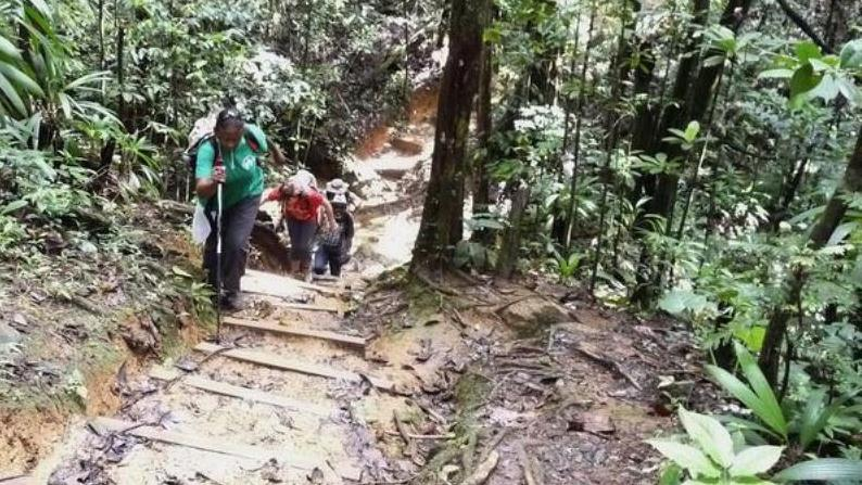 /excursion-image/guadeloupe-fwi/hiking-to-the-trois-cornes-waterfalls/076879_130214121839.jpg
