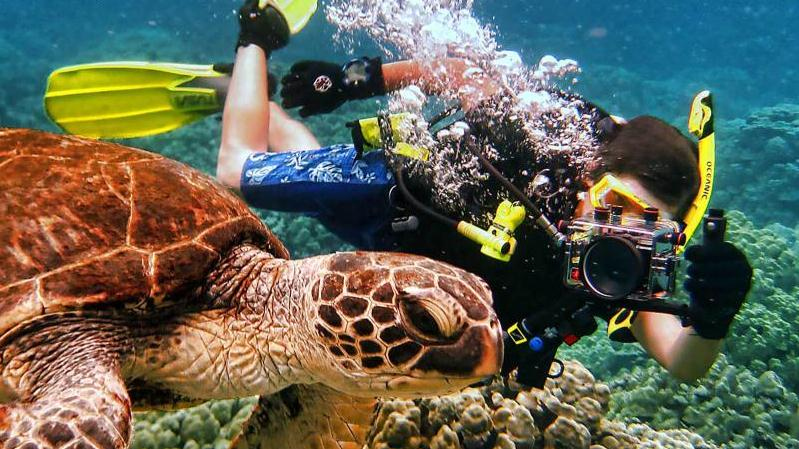 /excursion-image/hilo-hawaii/scuba-two-tank-dive-for-certified-divers/115204_151110020022.jpg