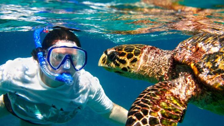 /excursion-image/kauai-hawaii/guided-south-shore-snorkel-adventure/134794_130516105728.jpg