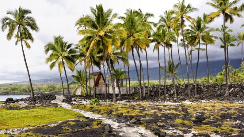 /excursion-image/kona-hawaii/classic-kona-tour-a-shoretrips-premium-shared-van-tour/093282_140402123443.jpg