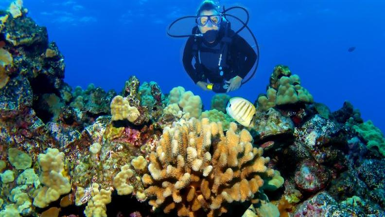 /excursion-image/maui-lahaina-hawaii/guided-scuba-eco-tour-to-lanai/005432_140318102125.jpg