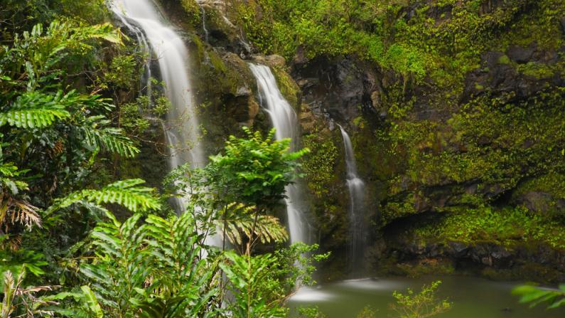 /excursion-image/maui-lahaina-hawaii/road-to-hana-local-style-hotel-guests/089955_140922014659.jpg