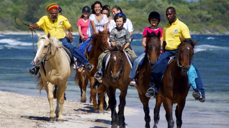 /excursion-image/montego-bay-jamaica/ride-swim-horseback-adventure-from-montego-bay/122179_130214010108.jpg