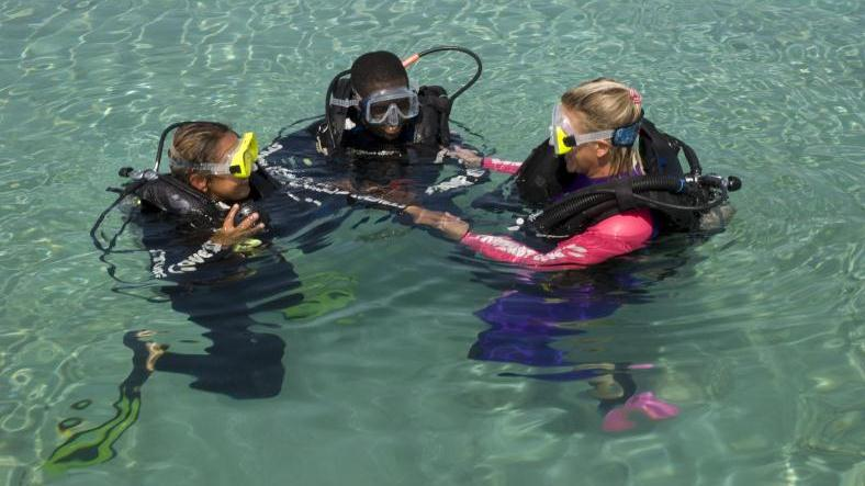/excursion-image/nassau-bahamas/scuba-discover-scuba-diving/000728_140417011133.jpg