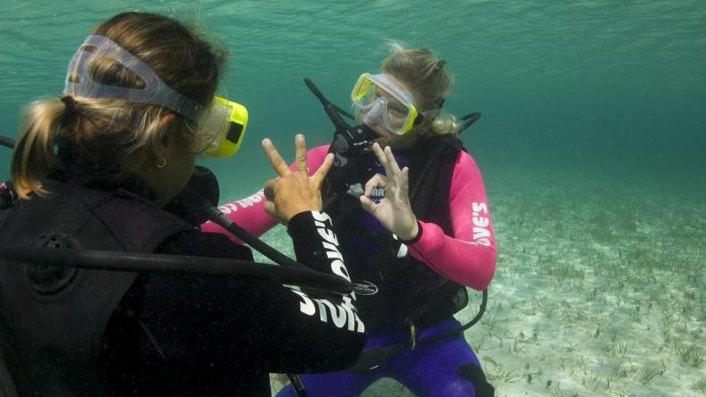 /excursion-image/nassau-bahamas/scuba-private-morning-discover-scuba-diving/032348_140417012644.jpg