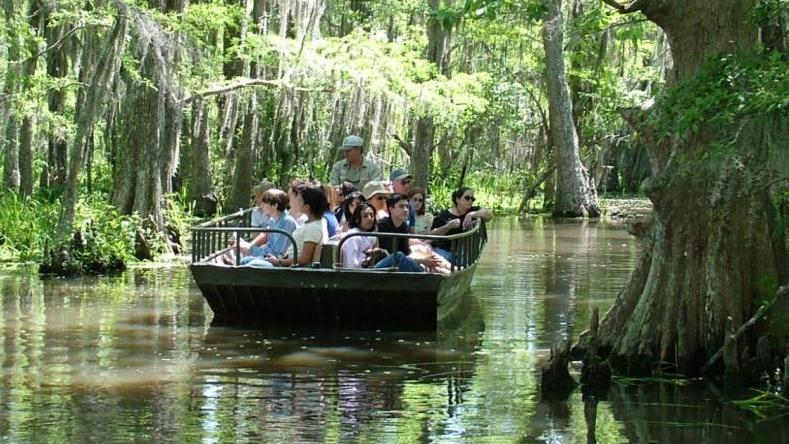 Louisiana S Very Best Swamp Tour New Orleans Louisiana