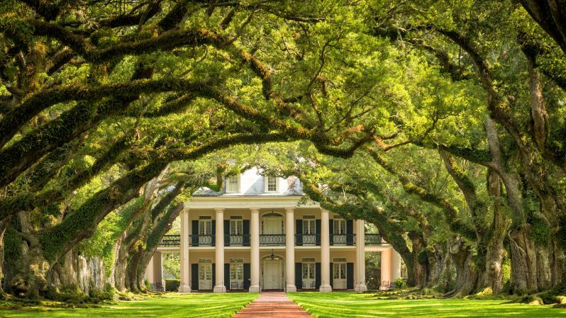 Private: Oak Alley Plantation - Private: Oak Alley Plantation. Copyright ShoreTrips.com.