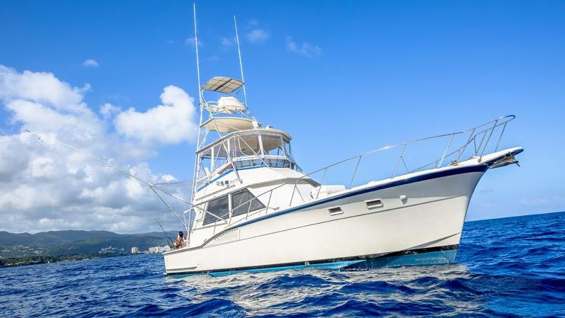 Deep sea fishing private charter for up to 8 ocho rios for Deep sea fishing jamaica