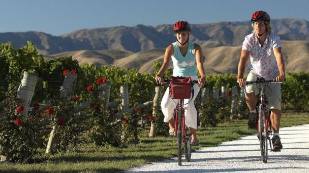 /excursion-image/picton-new-zealand/from-bike-to-vine-to-wine/119352_160212032322.jpg