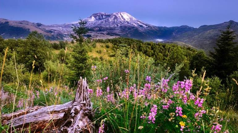 /excursion-image/portland-oregon/mt-st-helens-national-monument-and-ape-cave/138497_170208124657.jpg