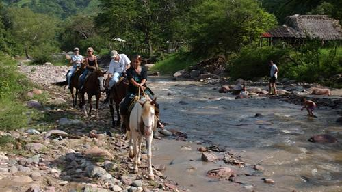 /excursion-image/puerto-vallarta-mexico/horseback-ride-into-vallarta-jungle/001114_110902110346.jpg