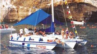 /excursion-image/puerto-vallarta-mexico/snorkel-in-a-secluded-cove-at-colomitos/055968_110902114442.jpg