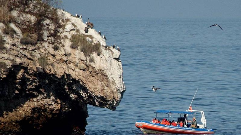 /excursion-image/puerto-vallarta-mexico/snorkeling-the-marietas-islands/012788_110902112138.jpg