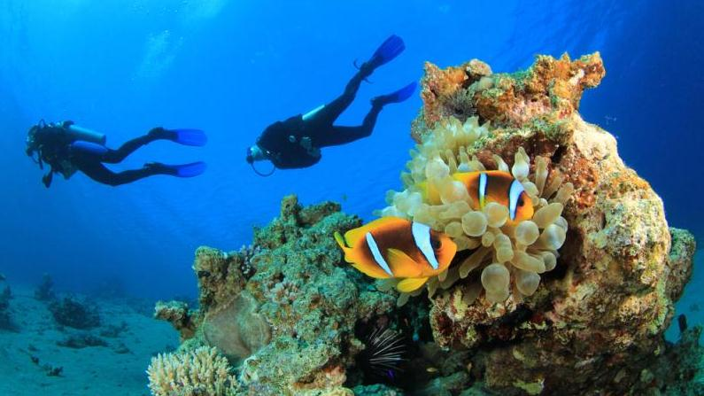 /excursion-image/st-kitts/scuba-a-pair-of-certification-dives/030685_140219105512.jpg