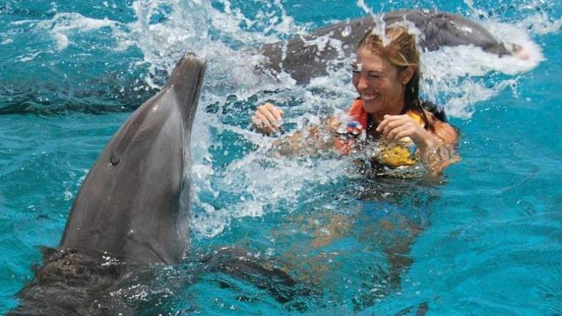 /excursion-image/st-kitts/swim-with-the-dolphins-the-swim-adventure-st-kitts/102375_150112032529.jpg