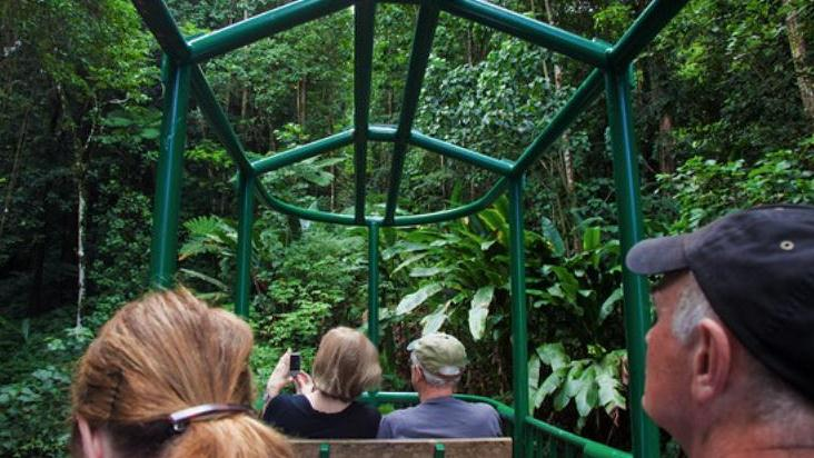 /excursion-image/st-lucia-castries/rainforest-aerial-tram-tour/047807_111110012454.jpg