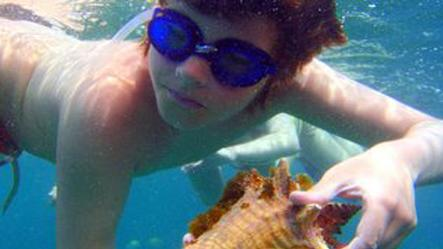 /excursion-image/st-martin-st-maarten/tintamarre-turtle-snorkel-and-pinel-island/048907_110909032927.jpg