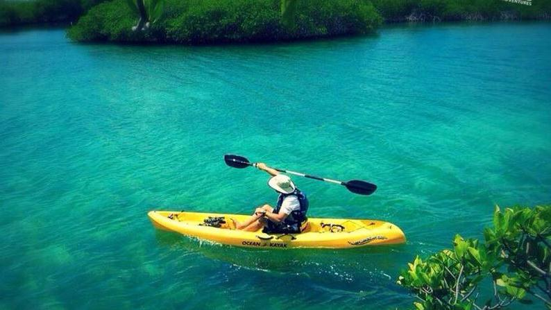 /excursion-image/st-thomas-usvi/full-day-fun-kayak-hike-and-snorkel/022715_141003093552.jpg