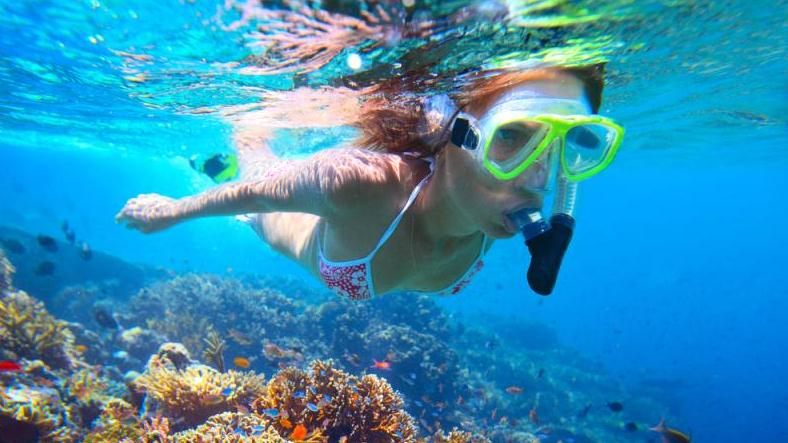 SAIL AND SNORKEL TO THE BRITISH VIRGIN ISLANDS | ST ...