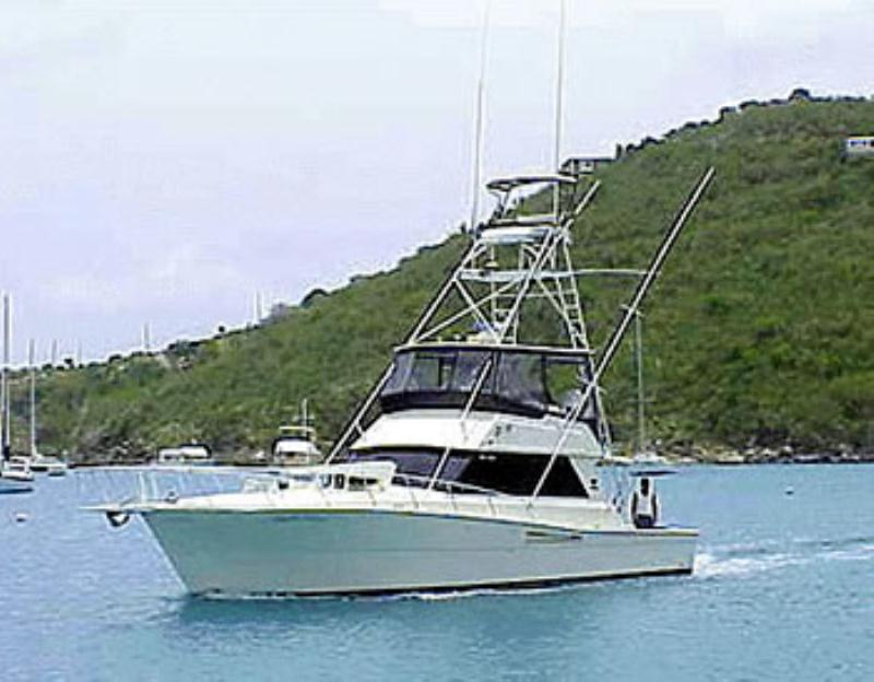 /excursion-image/st-thomas-usvi/sport-fishing-charter-with-a-top-notch-crew/000756_151203014309.jpg