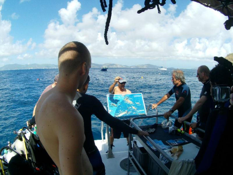 /excursion-image/tortola-bvi/scuba-two-tank-dive-in-tortola/007651_130625114634.jpg