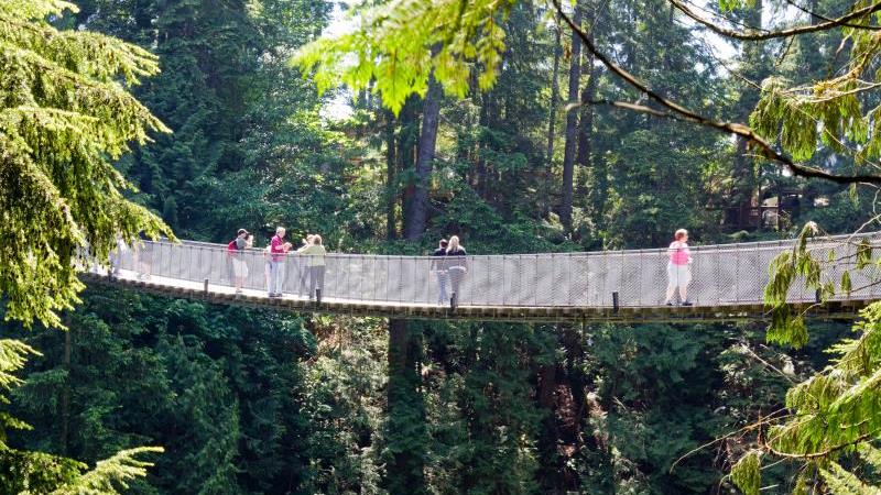 /excursion-image/vancouver-british-columbia/precruise-tour-private-full-day-vancouver-with-capilano-suspension-bridge-airport-pick-up/147029_170525100827.jpg