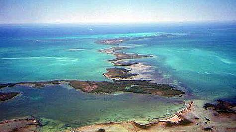 SCUBA...FLY AND 2 TANK DIVE TO AMBERGRIS CAYE FOR CERTIFIED DIVERS