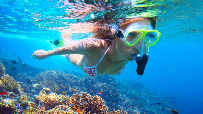 CREOLE ROCK SNORKEL ADVENTURE